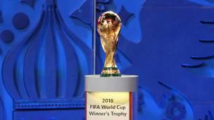 El trofeo de la FIFA que corona al campeón del mundo.
