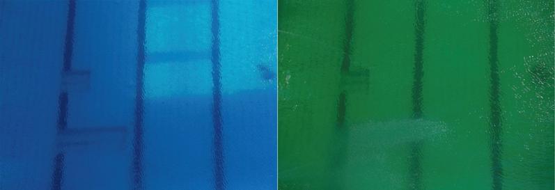 El antes y después del agua de los clavados.