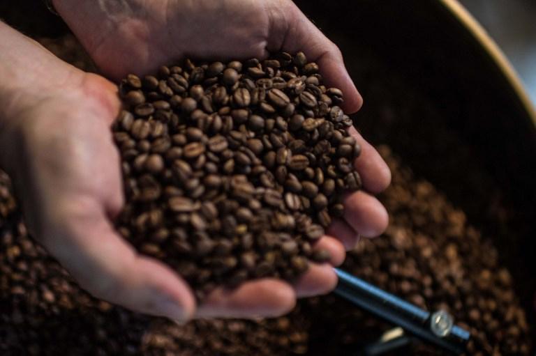 El café de buena calidad es en grano, recién molido o bien conservado.