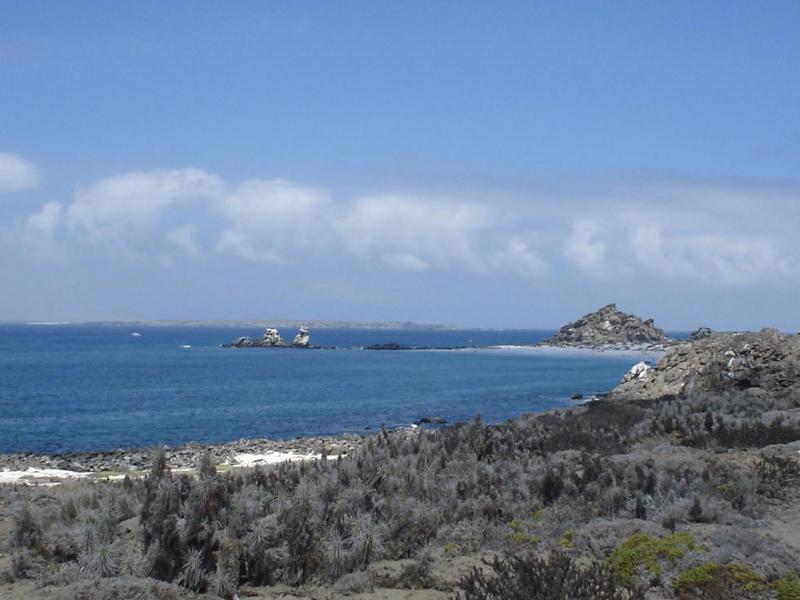 Isla Damas.