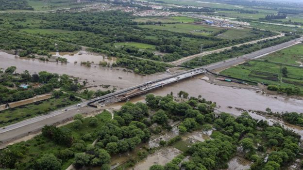 Según el Ministerio de Agricultura de Perú, se han perdido 1.200 hectáreas de cultivo solo en la región Piura.