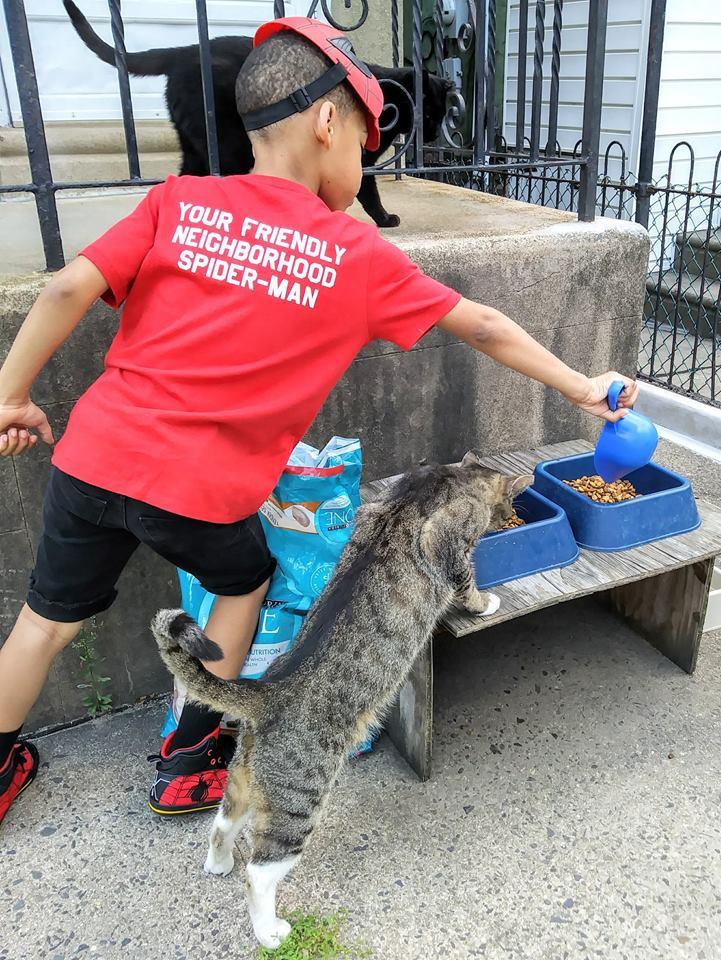 Shon alimentando a un gato