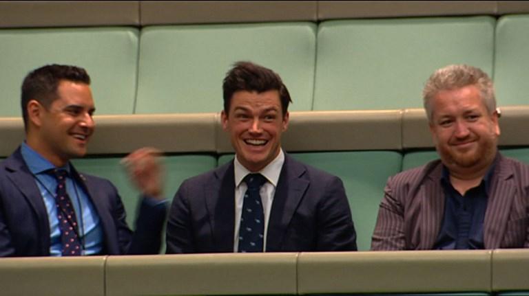 Propuesta de matrimonio en el parlamento australiano