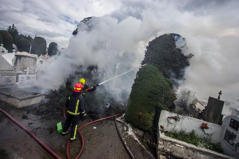 Incendio en cementerio municipal de Punta Arenas quema seis cipreses