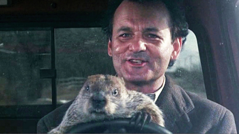 La marmota Phil 'predice' seis semanas más de invierno