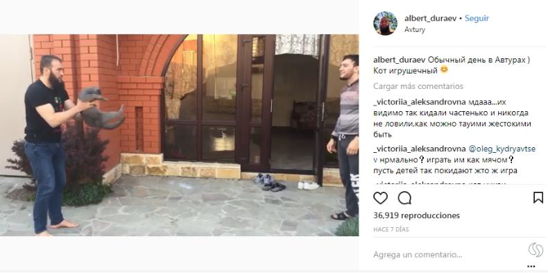 [FOTO] Luchador comparte polémico video lanzando un gato y presidente checheno lo defendió