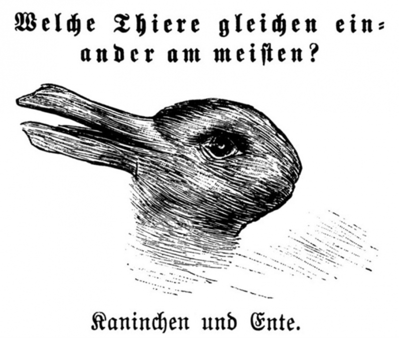 0b432f9e10 Puede que estés seguro de que se trata de un pato o de un ave mediante por  el pico que sobresale a la izquierda. Sin embargo