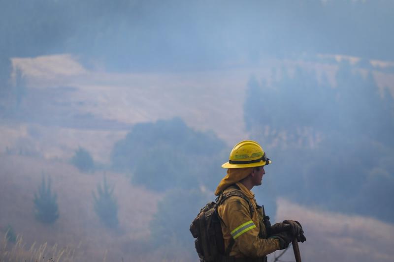 Onemi reporta 40 incendios forestales activos en el sur del país