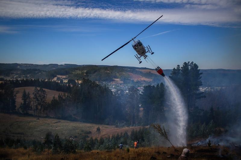 Onemi registra 33 incendios forestales activos según último reporte