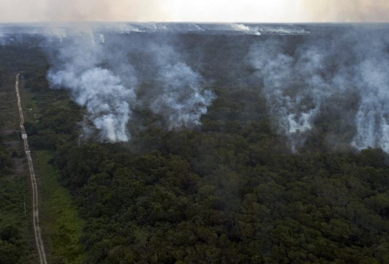 El silencioso incendio que afecta a uno de los mayores humedales del planeta en la Amazonia