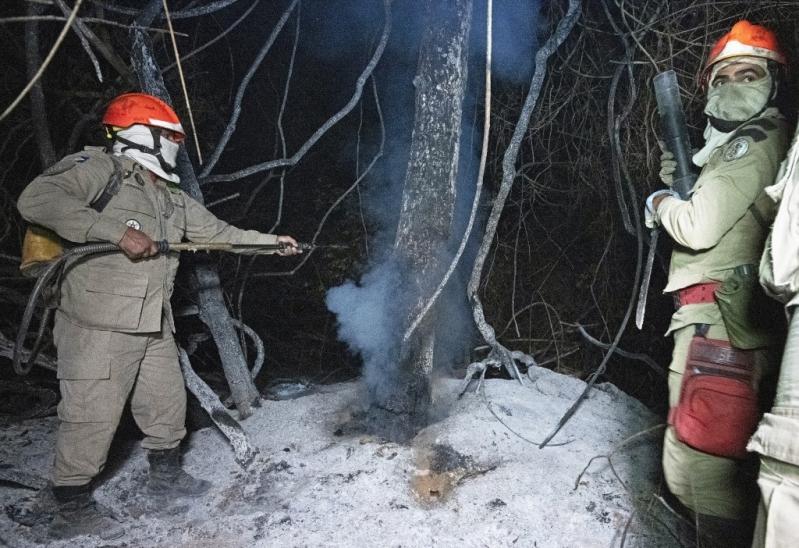 El silencioso incendio que afecta a uno de los mayores humedale