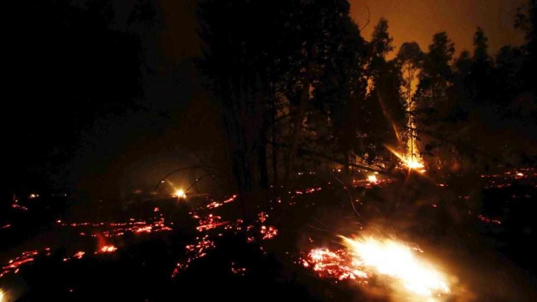 Profesional valdiviano fue llamado por la CONAF para enfrentar incendio en Pumanque
