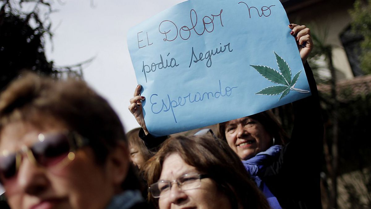 Sociedades médicas critican con dureza debate sobre uso medicinal de la marihuana