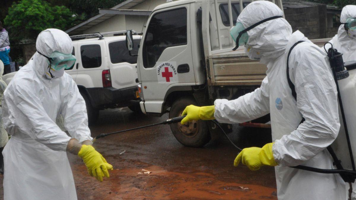 OMS afirma que en seis meses se podría eliminar la epidemia del ébola