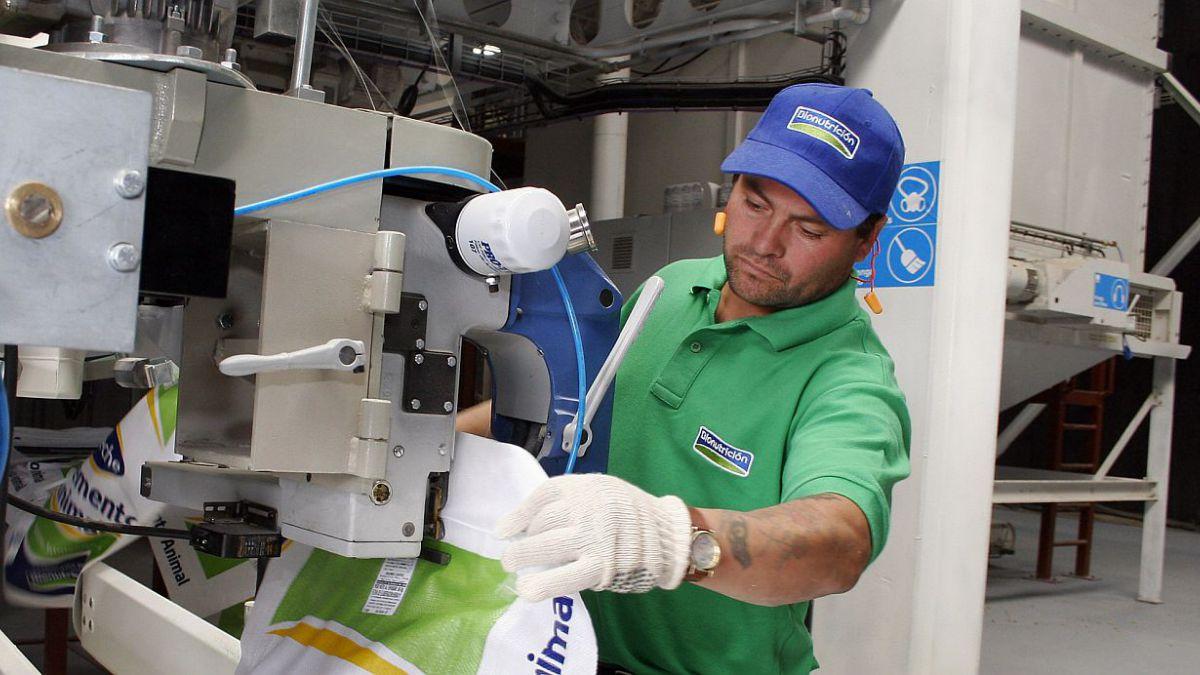 Radiografía al empleo en Chile: ¿Cómo ven los expertos el mercado laboral?