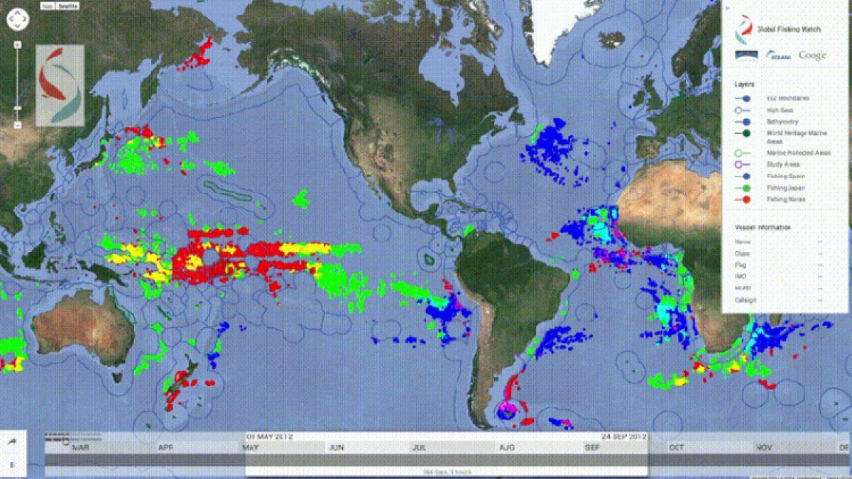 ONG crea herramienta para rastrear la actividad pesquera de 25 mil barcos