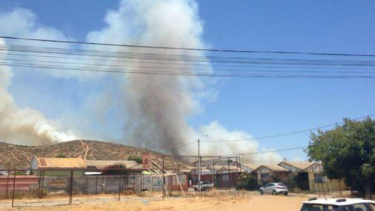 Onemi declara alerta roja en La Ligua por incendio forestal