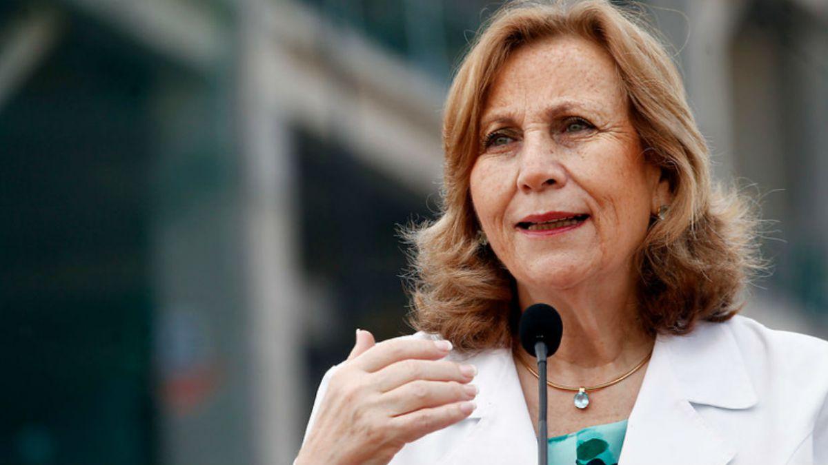 Gobierno confirma renuncia de Helia Molina