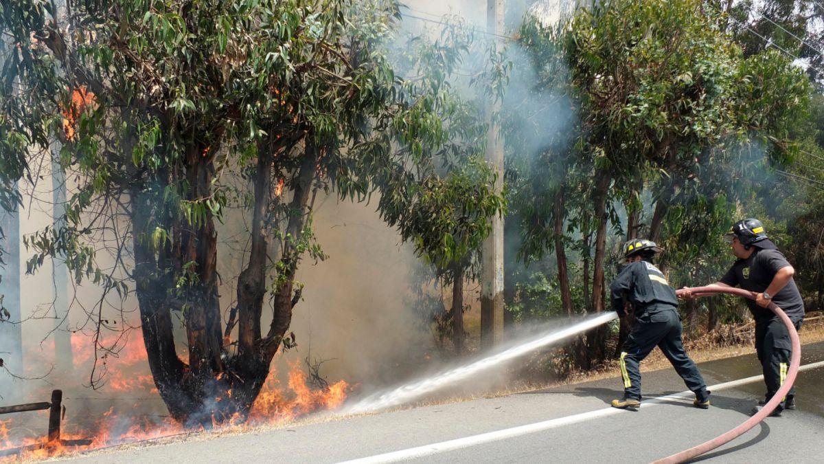 Onemi declara Alerta Roja para San Antonio por incendio forestal activo