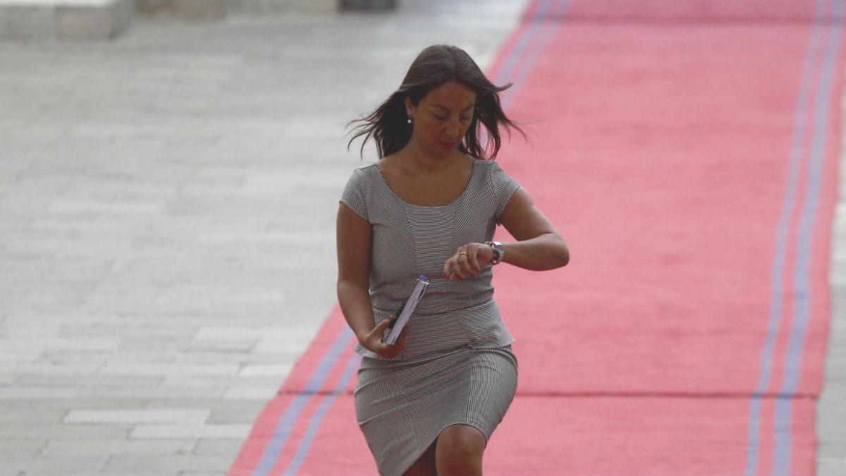 Hombre que amenazó a ex ministra Cecilia Pérez por Twitter será formalizado