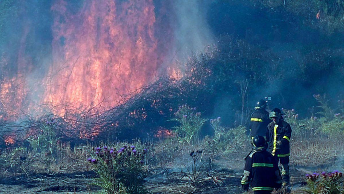 Senadores proponen crear Plan de Contingencia Nacional contra incendios forestales