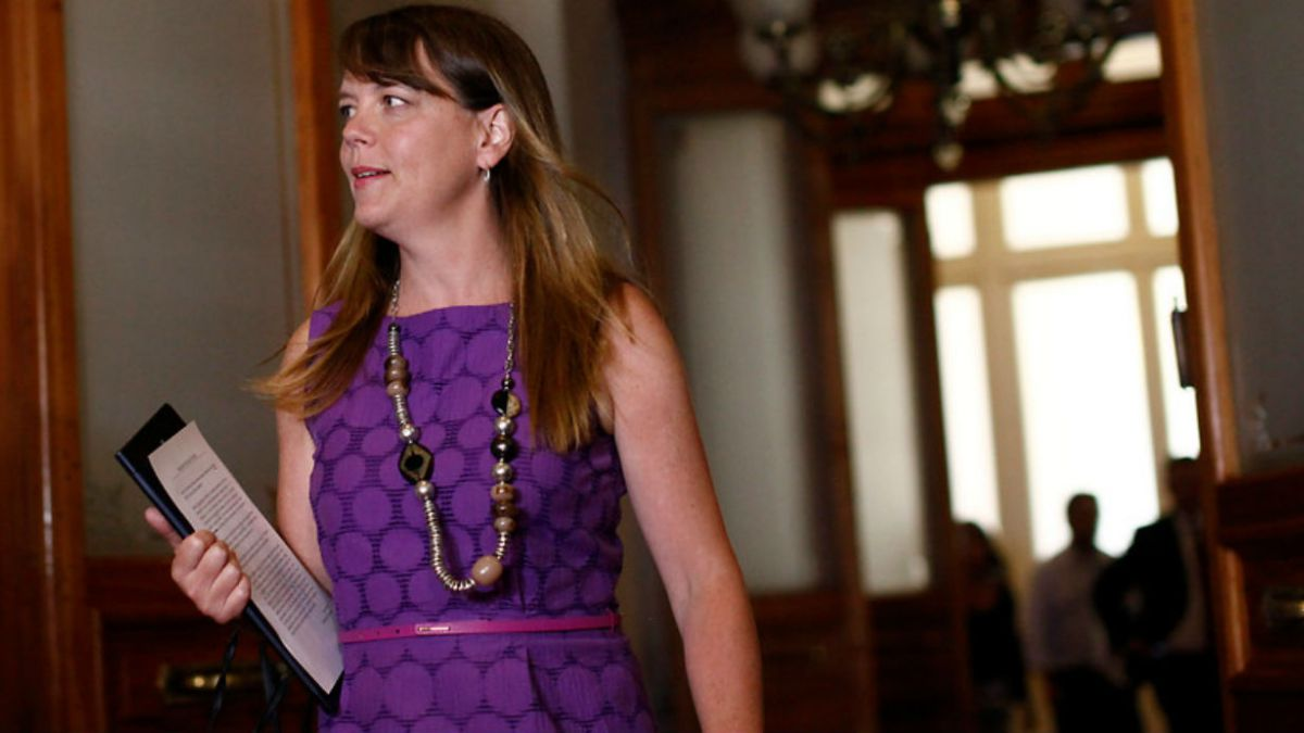 Senadora Von Baer se reintegra a trabajo de comisión unida de Hacienda y Educación