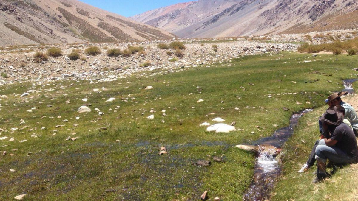 Humedal Estero Derecho es declarado Santuario de la Naturaleza en la IV región
