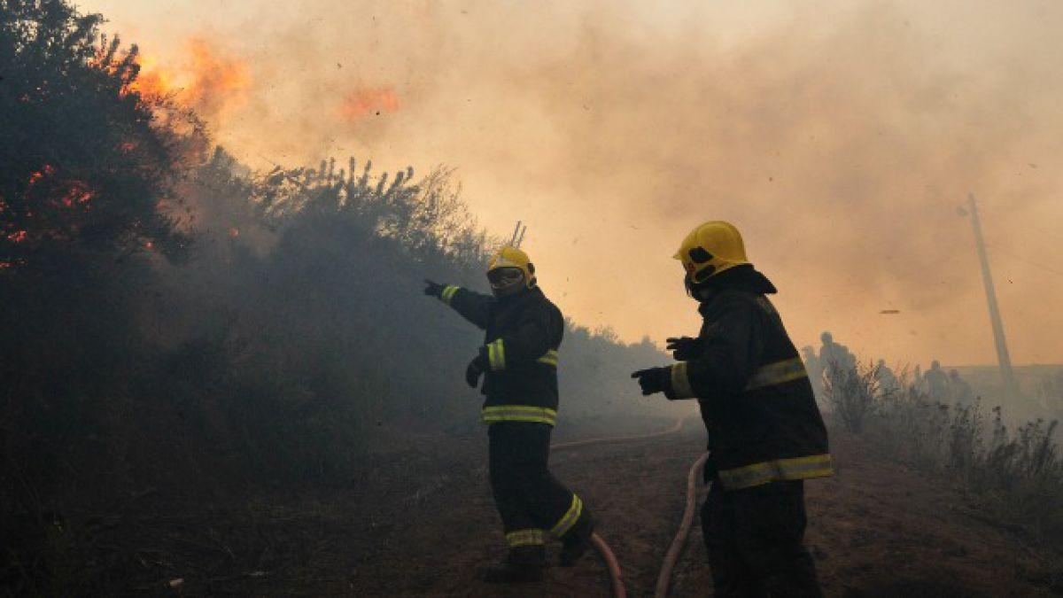 Conaf: Alrededor de 37 incendios forestales se registran a diario en el país