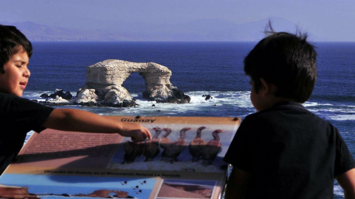 Colegio Médico denuncia que arsénico afecta gravemente a niños de Antofagasta