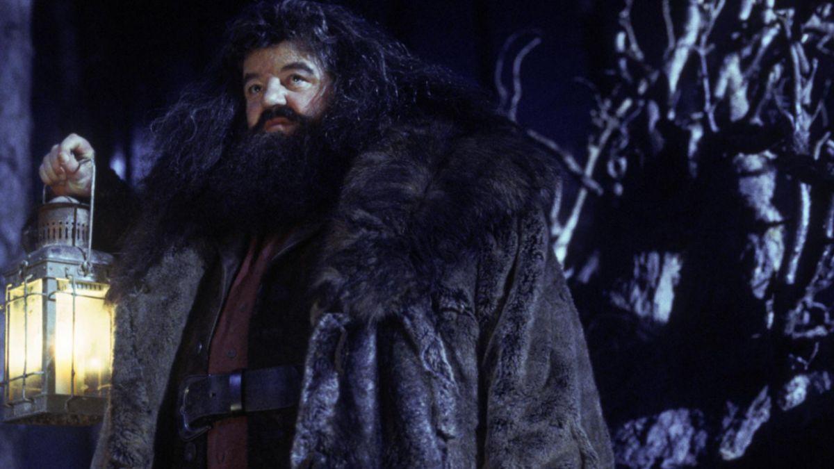 """Actor de la saga """"Harry Potter"""" es hospitalizado tras enfermarse en vuelo"""
