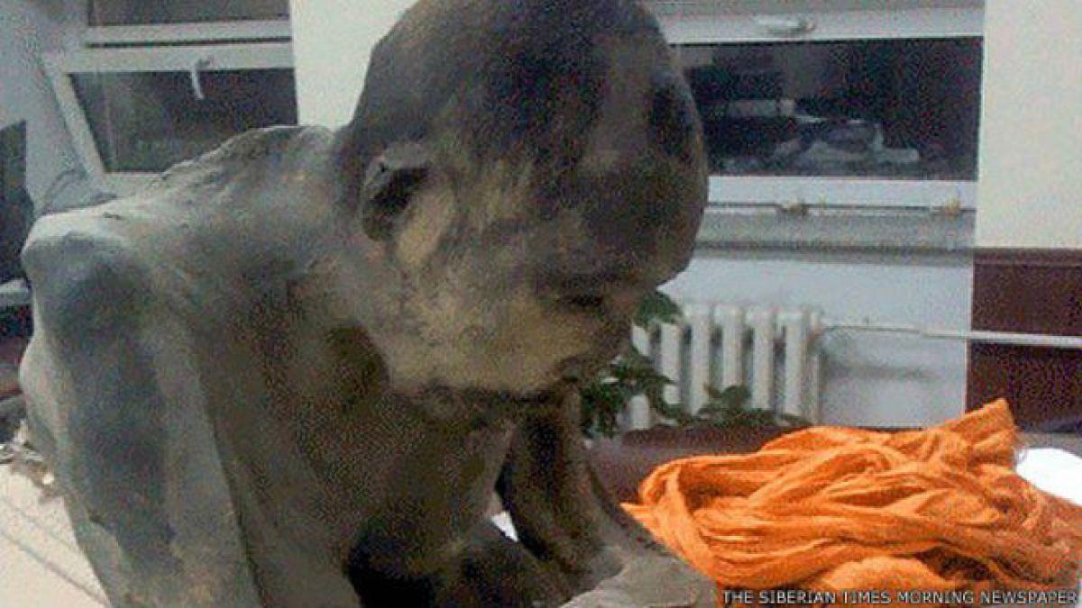 El monje budista momificado que no está muerto