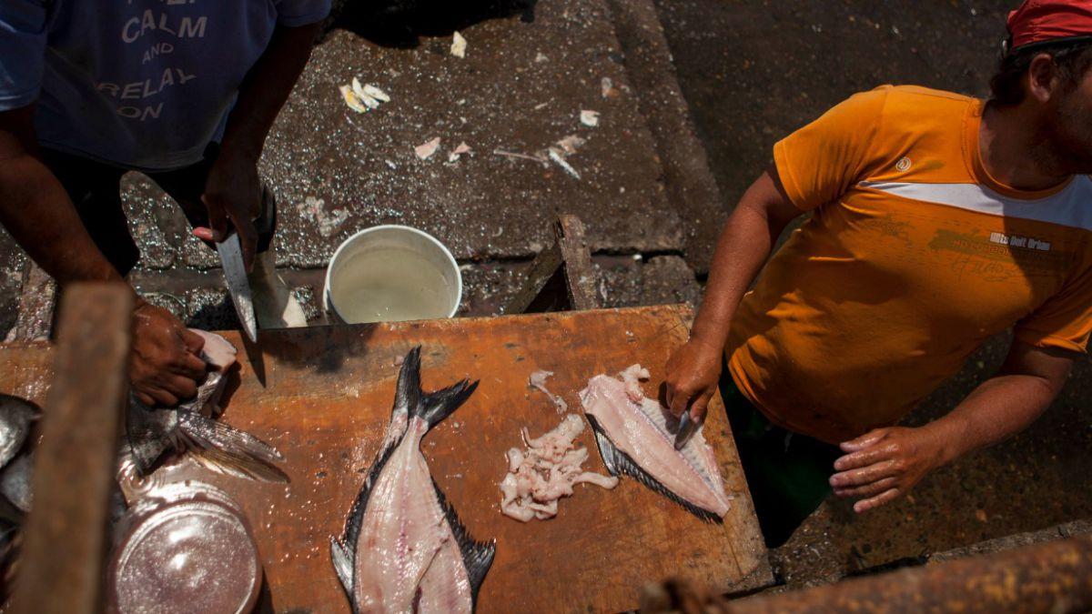 Pescadores artesanales deberán contar con seguro de vida obligatorio