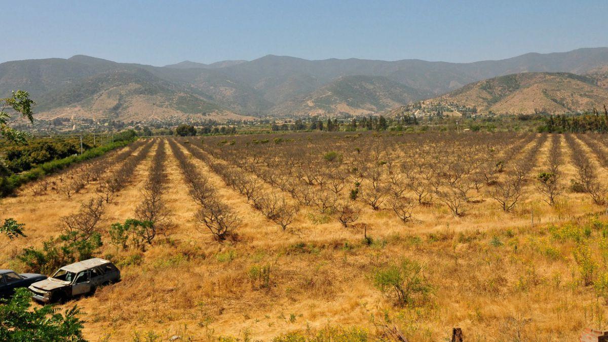 MOP decreta escasez hídrica en regiones de Atacama y Coquimbo
