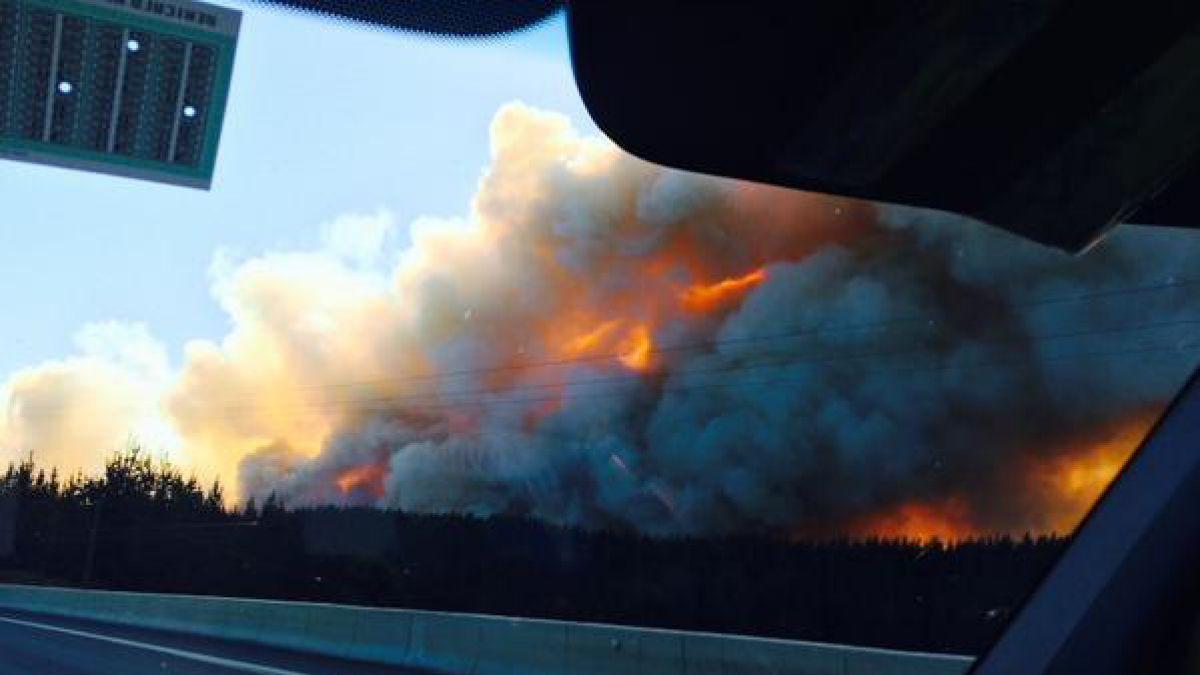 Brigadas contienen incendio en Laraquete y se desplazan a Curanilahue