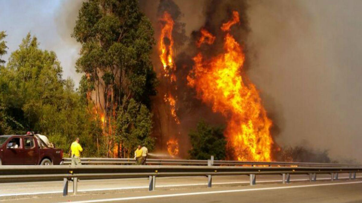 Se declara alerta roja en la  comuna de Valparaíso por incendio forestal