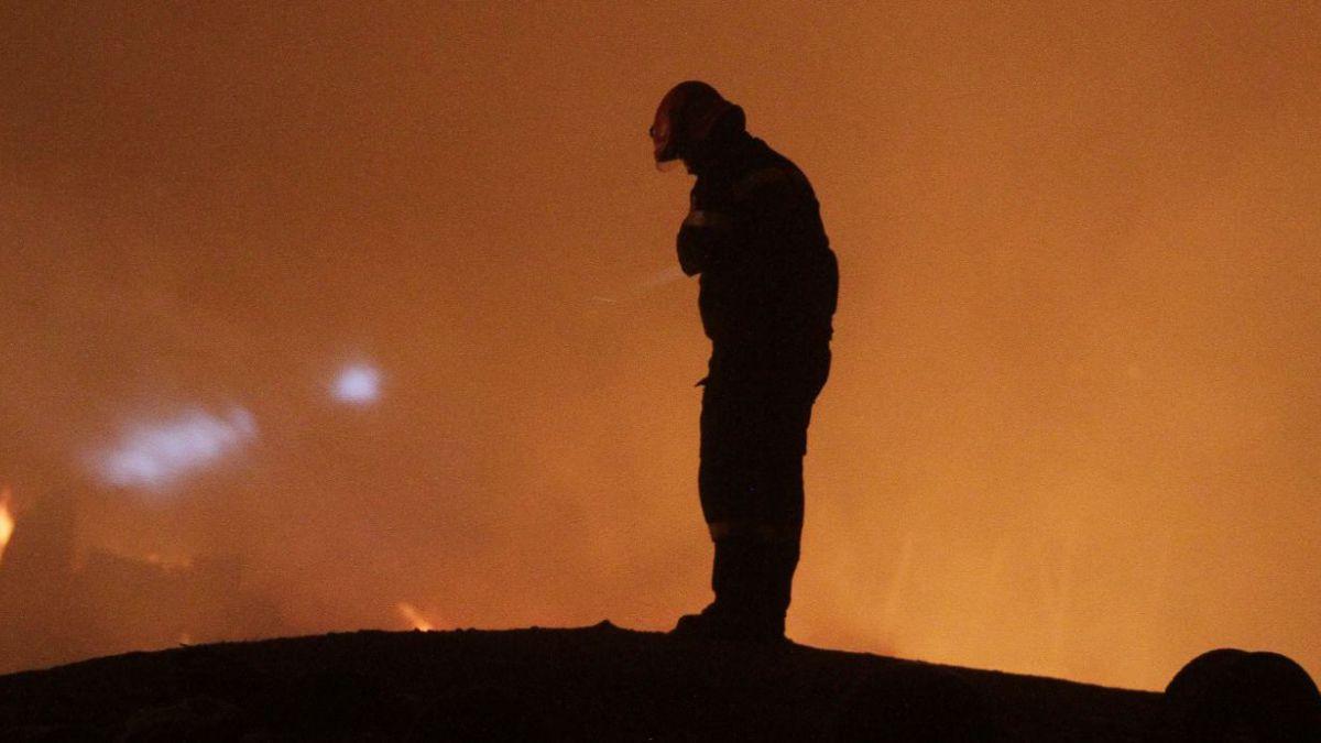 Incendio en Valparaíso: Fuego se habría originado por aves electrocutadas