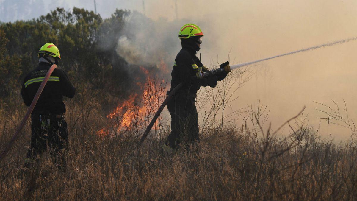 Incendio en Casablanca: Llamas avanzan hacia reserva y efectos en Ruta 68 dependerá del viento