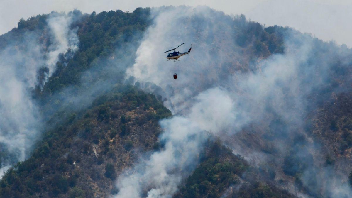 Balance Onemi: 45 incendios forestales activos en el país