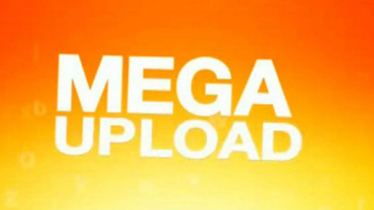 Condenan en EE.UU. a programador de sitio web Megaupload