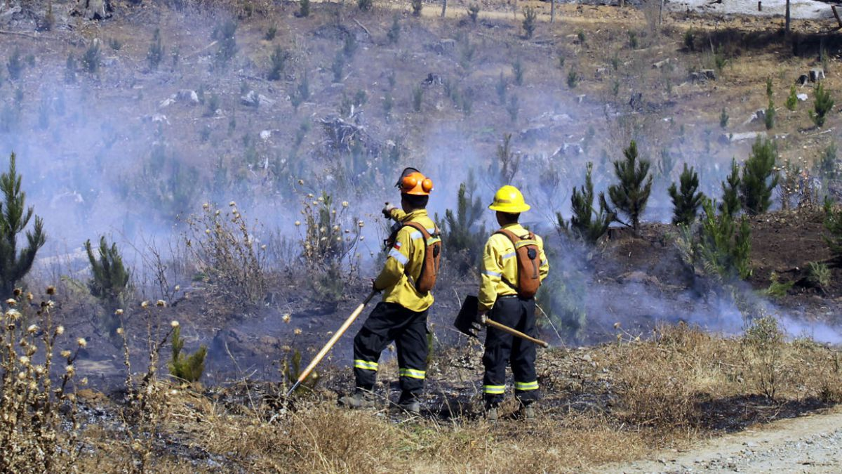 Conaf: jornada de hoy registra 143 incendios activos en el país