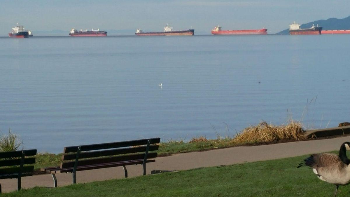 Paro portuario en EE.UU: Gobierno gestiona apoyo a exportaciones chilenas