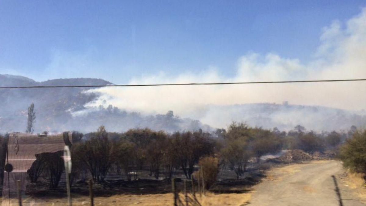 Incendio en Curacaví consume 40 hectáreas, una casa y cuatro vehículos