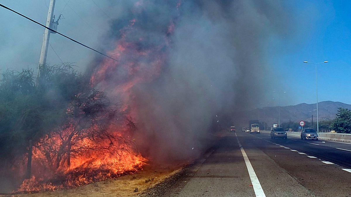 Detienen a sospechoso de causar incendio en Curacaví