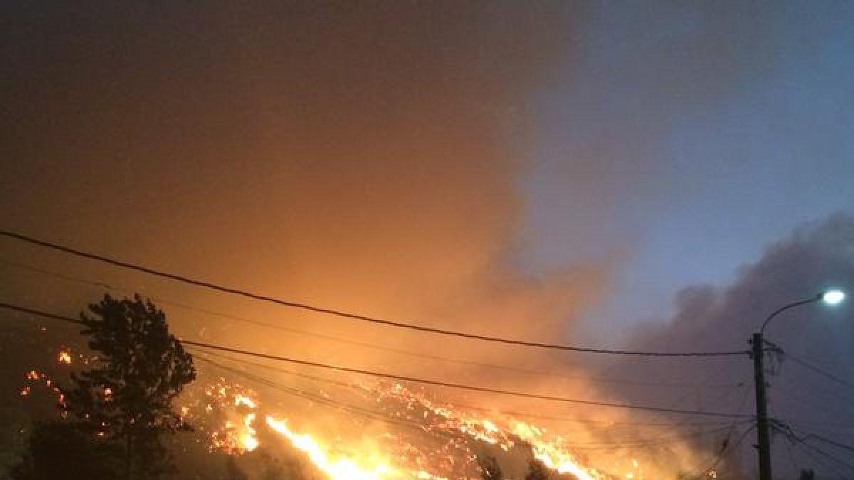 Incendio en Colcura se encuentra controlado según alcalde de Lota