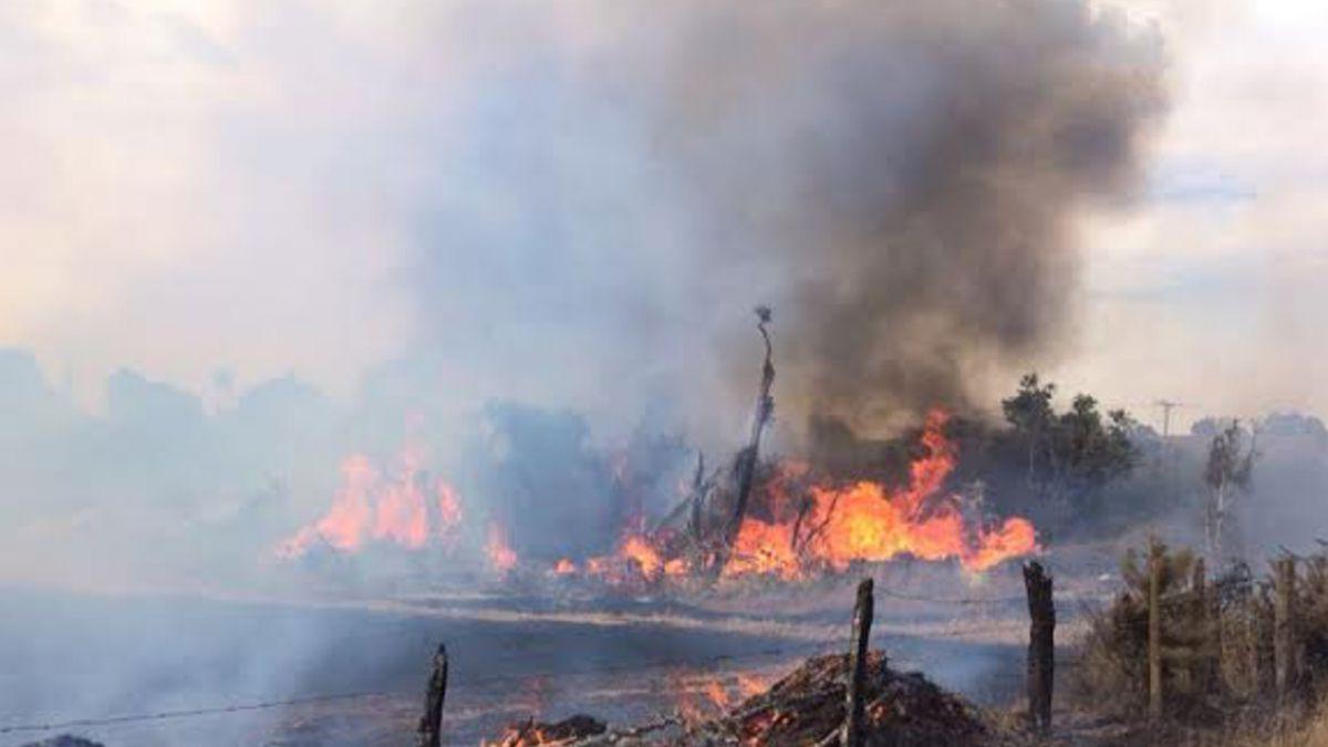 Voluntario de Bomberos falleció combatiendo incendio forestal