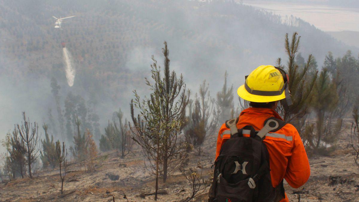 El resumen nacional de los incendios forestales