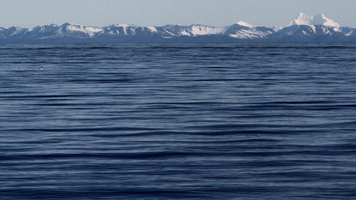 Famosos chefs reclaman falta de pescados y apoyan campaña para salvar océanos