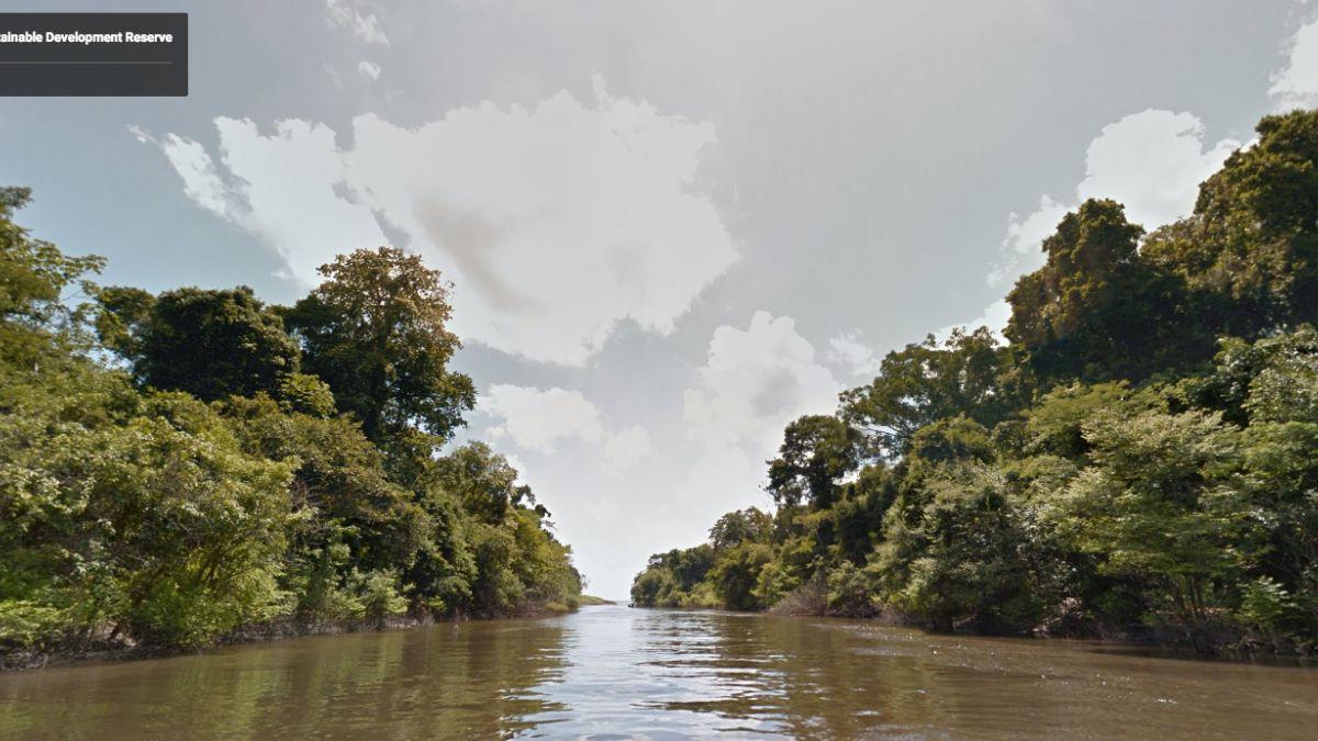 [VIDEO] Así se ve el Amazonas en Google Street View