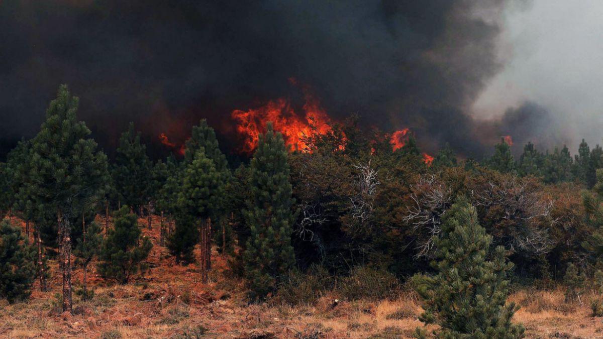 El incendio forestal más grande de su historia afecta a Argentina