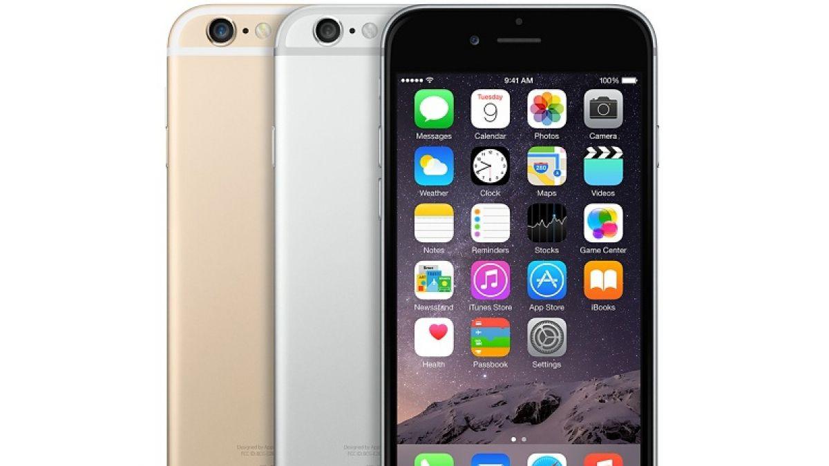 Mayor dependencia del iPhone lleva a Cook a crear nuevos modelo